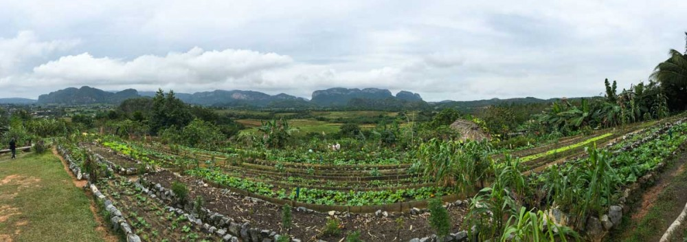 farm-slider-19
