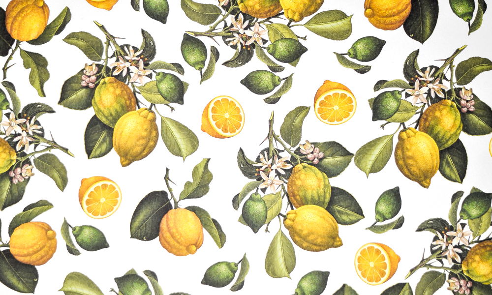 rossi paper lemons