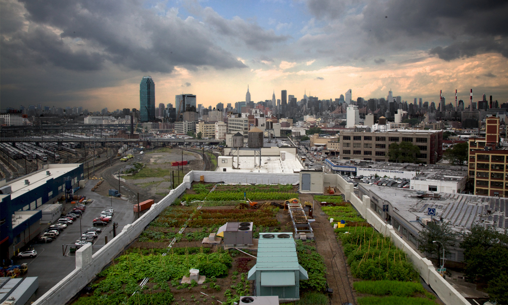 urban agriculture lecture